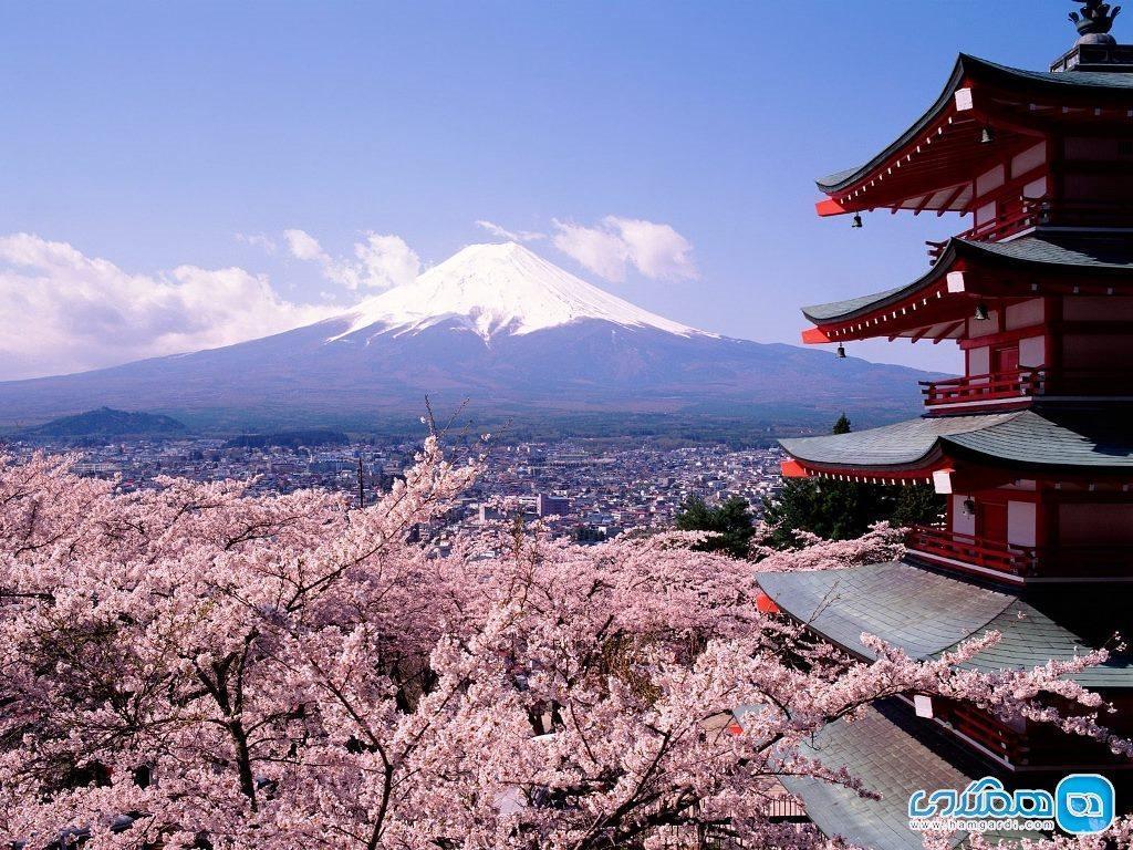 دانستنی هایی درباره فرهنگ ژاپنی ها که باید بدانید