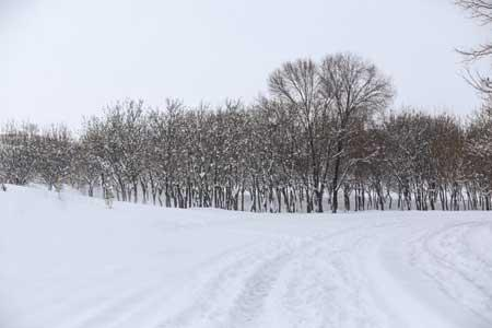 بارش برف و باران و کاهش دما ، از سفرهای برون شهری خودداری کنید